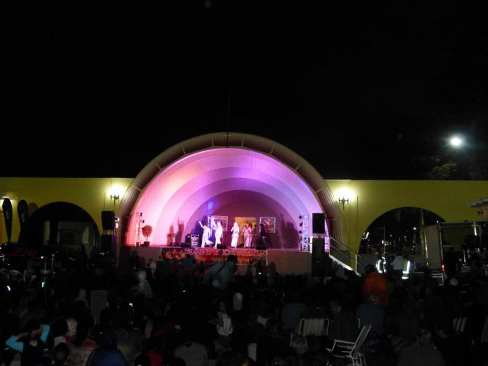 Diwali Festival of Light, Napier