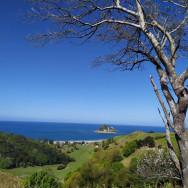 View en route to TMGT geocache Anaura Bay Gardens