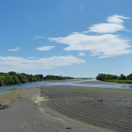 Looking seaward along the Tukituki River